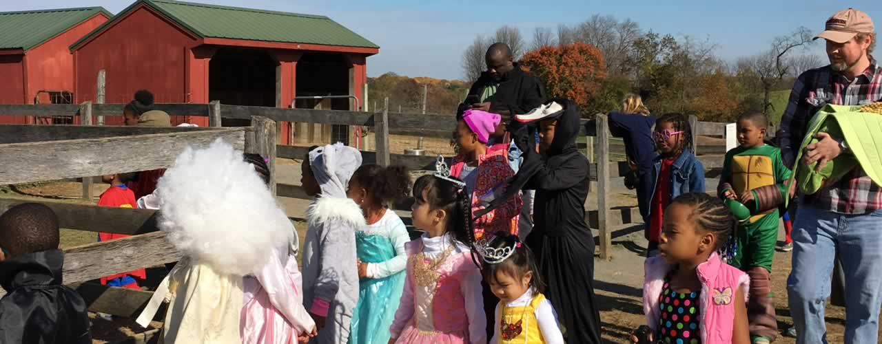 Halloween Parade at the farm