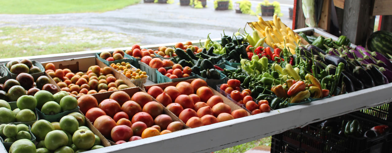 Roadside Farm Stand laid out